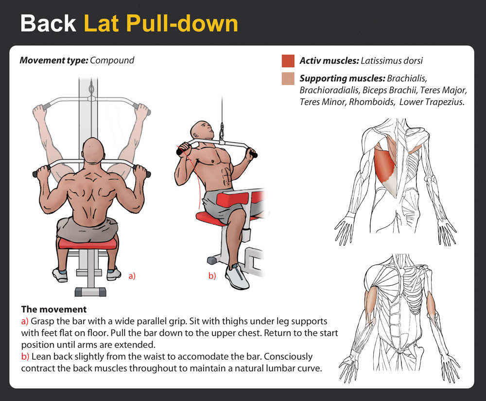 Image Result For Pulled Lat Muscle
